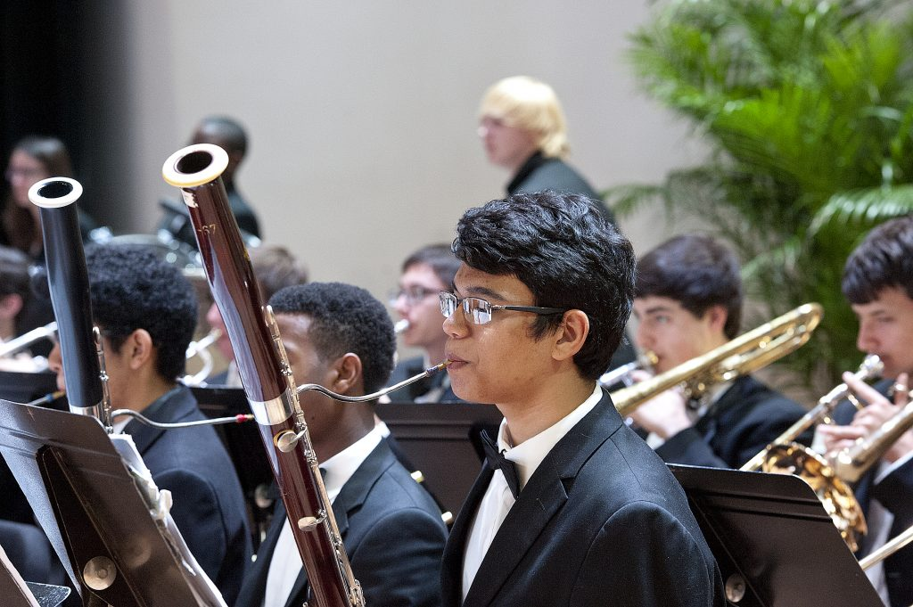 Bassist Section at a Performance