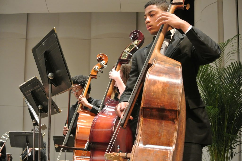 Double Bass Section at a Performance