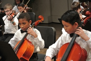 Young Cellist at a Performance